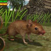 Игра Симулятор мыши: Выживание