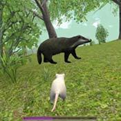 Игра Симулятор мышки