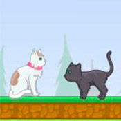 скрин игры Кошки и собаки