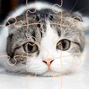 скрин игры Пазл с кошками