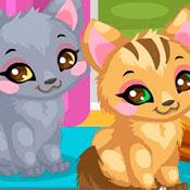 скрин игры Уход за котятами