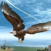 Скрин игры Симулятор птицы